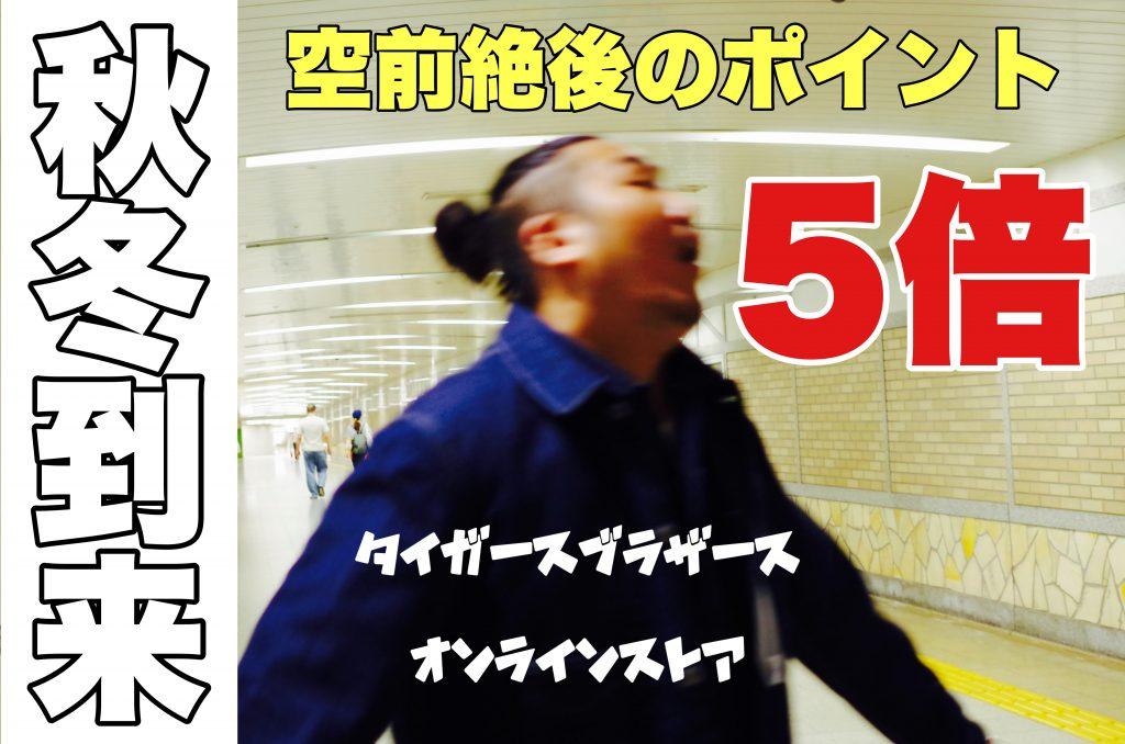 ポイント5倍!!